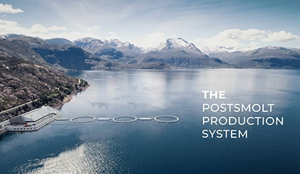 The Postsmolt Production System