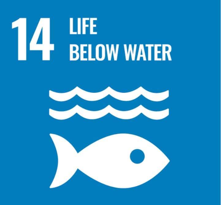 Sustainability HighComp - Life below water